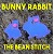Bunny Rabbit - Includes design files in 2 sizes!