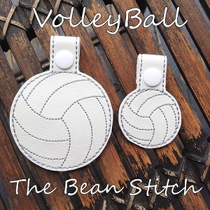 Volleyball - TWO Sizes INCLUDED!!!